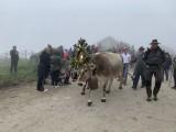 Auf dem Weg ins Tal begleitet von den Besitzern und Besuchern.
