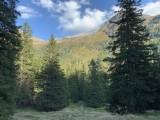 Wunderbare Landschaften im gesamten Tuxertal.